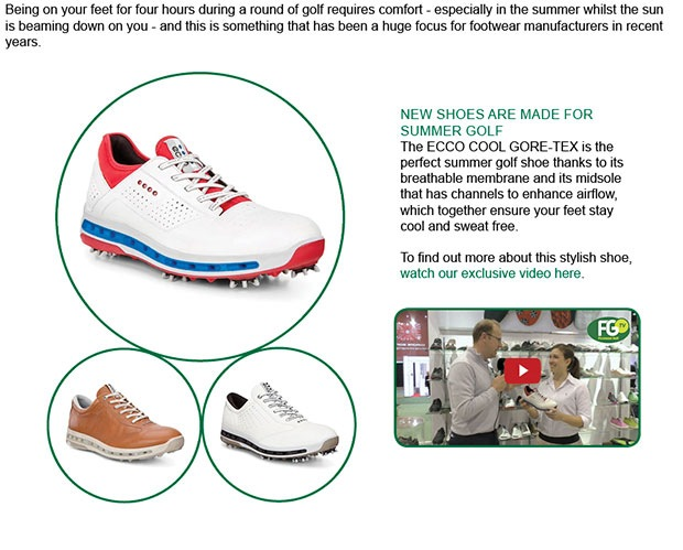 ECCO Shoe Article